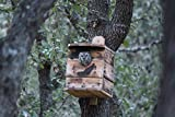 Small Screech owl house. 1 UNIT. OWL Houses. NESTING BOX. BY. M.HOLLEY. FOR OWL RE-HABE AND OUT SIDE USE. Best on market. Made in Ohio U.S.A. ONLY BY U.S.A. RAW MATERIAL AND U.S.A. VETS.