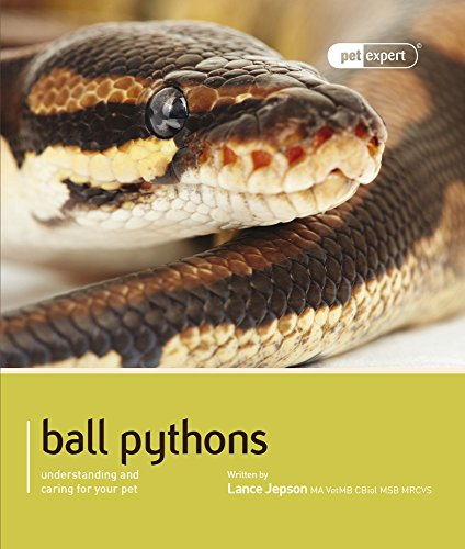 Ball Python (Royal Python) (Pet Expert) by Magnet & Steel