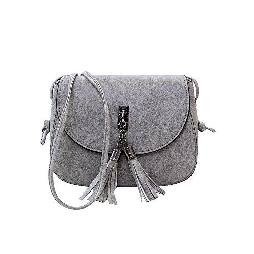 Yuan Womens Tassel Fashion Shoulder Handbag Cross Body Messenger Small Bag Grey