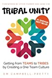 img - for Tribal Unity: Getting from Teams to Tribes by Creating a One Team Culture book / textbook / text book