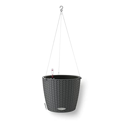 Lechuza Nido Cottage - All-In-One, Granite : Hanging Planters : Garden & Outdoor