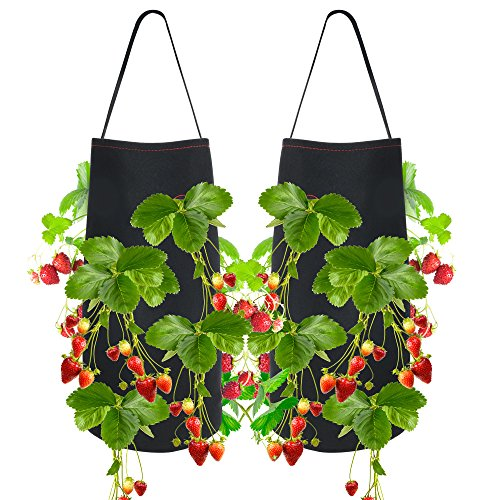 (Pri Gardens Hanging Strawberry Planter for Strawberry Bare Root Plants (Roots not Included) Felt Material 2 Pack)