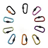 Carabiner Astarye 10 Pack Aluminum Alloy D-Ring Key Chain Clip Hook For Camping Hiking and Travelling