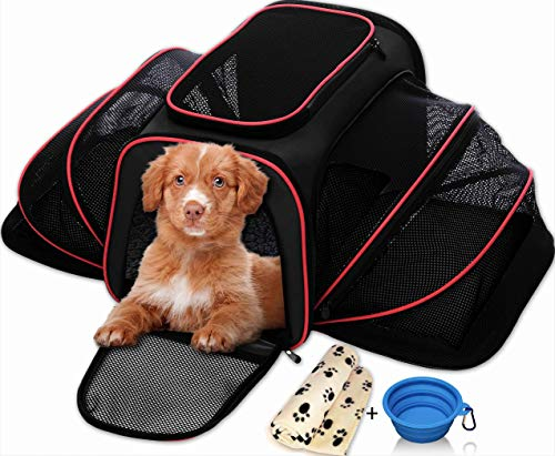 Most bought Dog Soft Sided Carriers
