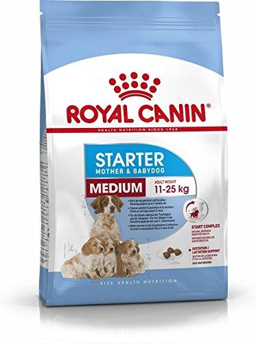 ROYAL CANIN Medium Starter - 12000 gr: Amazon.es: Productos para mascotas