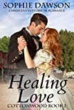 Bargain eBook - Healing Love
