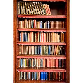 SCHOOL BOOKS SHELF BROWN BACKDROP BACKGROUND VINYL PHOTO PROP 5X7FT 150X220CM