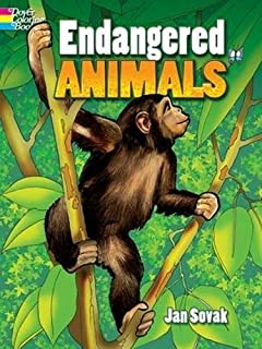 Amazon Endangered Animals Coloring Book For Adults