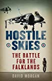 Front cover for the book Hostile Skies by David Morgan