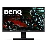BenQ GL Series 24.5-Inch Screen LCD Monitor (GL2580H)