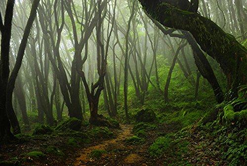 Reptile Habitat, Terrarium Background, Creepy Mossy Forest, 24 x 36 24 x 36 BNS