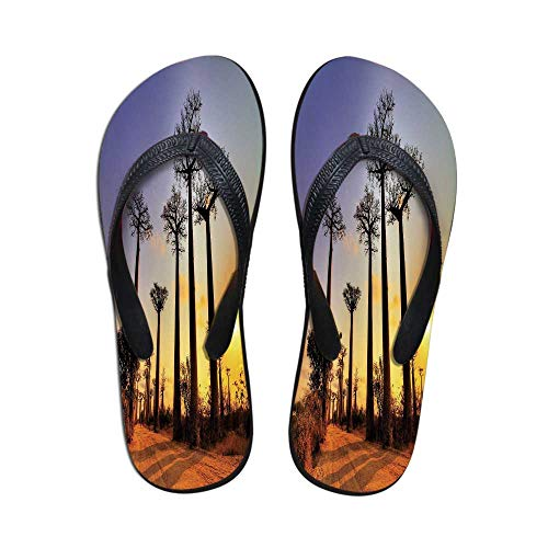 TecBillion Sunset Durable Flip Flops,Tropical Horizon with Tall Tree Madagascar Skyline Exotic African Scenery for Leisure Activities,US Size 8