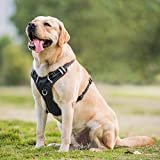 DogJog Dog Harness Reflective Adjustable No Pull Pet Vest Oxford Vest for Dogs Easy Control for Medium Large Dogs