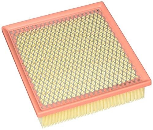 ACDelco A3621C Professional Air Filter