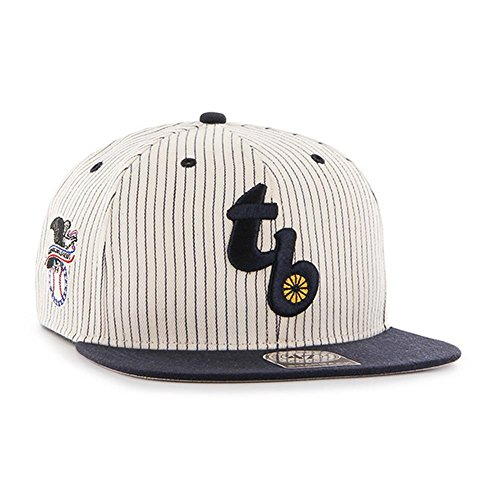 Tampa Rays Bay Single (MLB Tampa Bay Rays Woodside Captain Adjustable Snapback Hat, One Size, Navy)