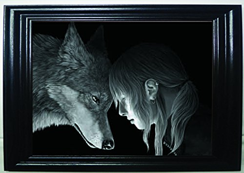 3d WOLF CONNECTION 3D FRAMED optical illusion Wall Art