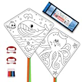 DIY Kites for Kids Kite Making Kit Bulk, Decorating