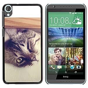 TopCaseStore / la caja del caucho duro de la cubierta de protección de la piel - Cool Cat - HTC Desire 820