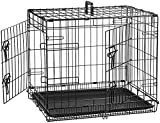 AmazonBasics Double-Door Folding Metal Dog Crate Cage - 24 x 18 x 20 Inches