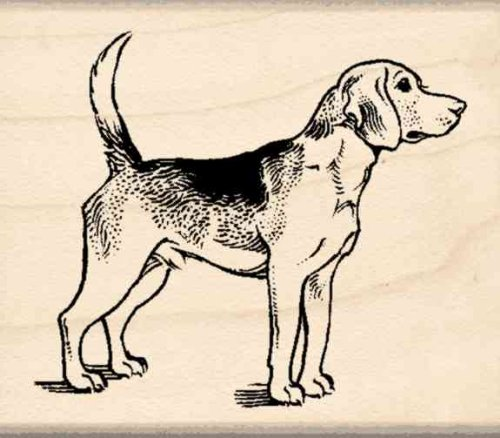 Beagle Rubber Stamp - 1-3/4 inches x 2 inches