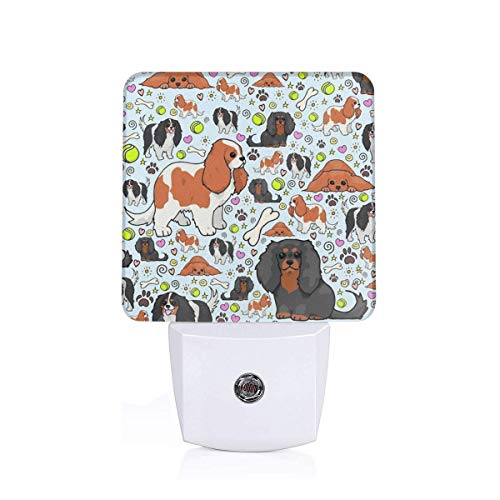 Cavalier聽King聽Charles聽Spaniel Pattern Sleep Night Light Nightlight Auto Sensor LED Dusk to Dawn Night Light Plug in Indoor for Adults