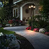 Outdoor Post Light with LED Bulbs, 3-Head