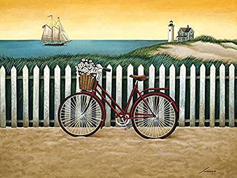 Amazon.com: Ciclo a la playa por Lowell Herrero bicicleta ...