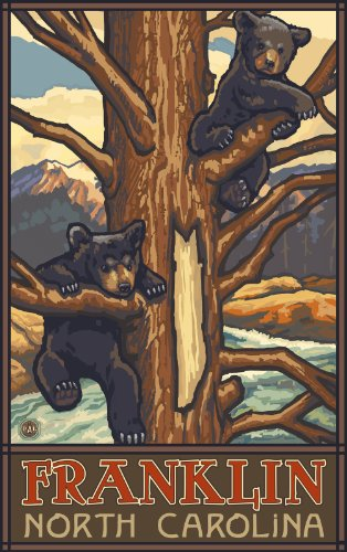 Northwest Art Mall Franklin Two Bear Cubs in Tree North Carolina Wall Art by Paul A Lanquist, 11 by - Mall Park Franklin The