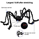 Giant Spider, 6.6 ft/78 in Fake Hairy Halloween Spider, Extra Large Decoration for Outdoor or Indoor, Yard Home Shop Decor, Spooky Tarantula (Large)
