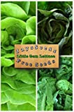 head gems - Organic Muir Lettuce 200 Seeds Upc 658921944035 Includes Free Seeds You Pick (Little Gem Lettuce)