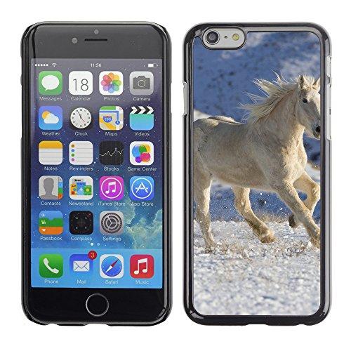 "Premio Sottile Slim Cassa Custodia Case Cover Shell // V00003989 cheval blanc 5 // Apple iPhone 6 6S 6G PLUS 5.5"""