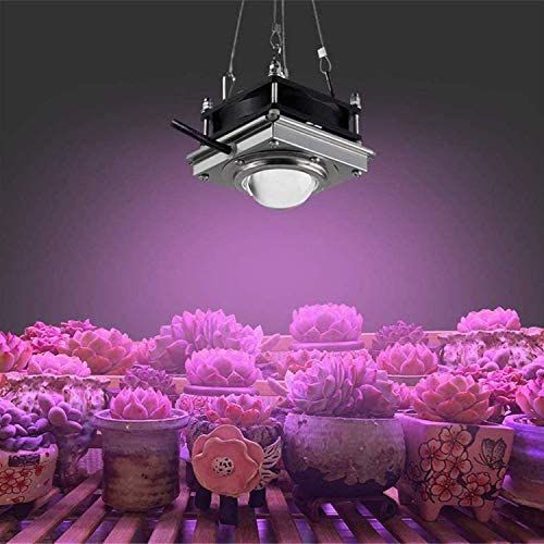 WYCN Full Spectrum COB Plant lamp 300W 4000K Full Spectrum Plant Growth lamp, Suitable for Indoor Plants, Flowers, Vegetables, hydroponic Cultivation, Cultivation of Seedling Growth Black