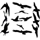 photo regarding Printable Hawk Silhouette for Window known as : Birds Determination Birdsaver Window Decals