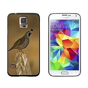 California Quail - Bird - Snap On Hard Protective Case for Samsung Galaxy S5 - Black