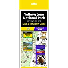Yellowstone National Park Adventure Set: Map and Naturalist Guide