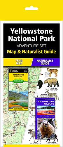 Yellowstone National Park Adventure Set: Trail Map & Wildlife Guide