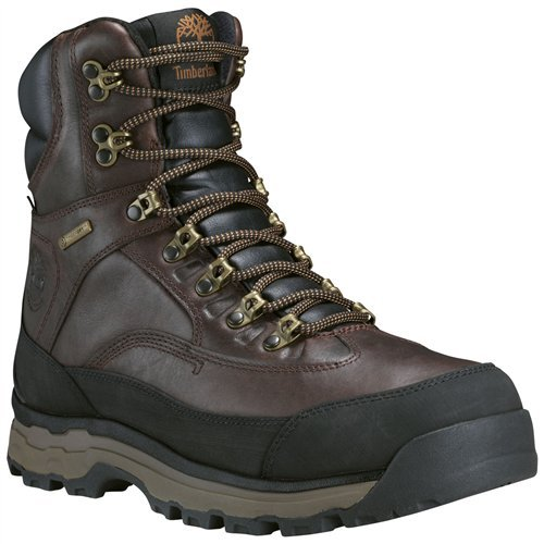 (Timberland Men's Chocorua Trail 8 inch Waterproof Hiking Boot Dark Brown/Mulch Size 10 M US)