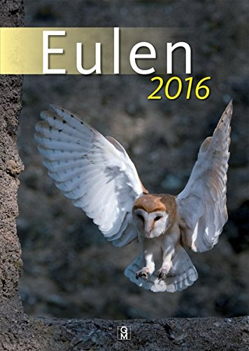 Eulen 2016: Wandkalender