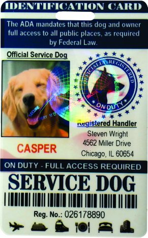 4-Piece Total = (3) Animal Tags & (1) Service Identification