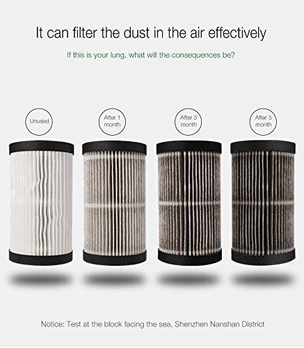 DeeXop Air Cleaner Air Purifier System with SPA