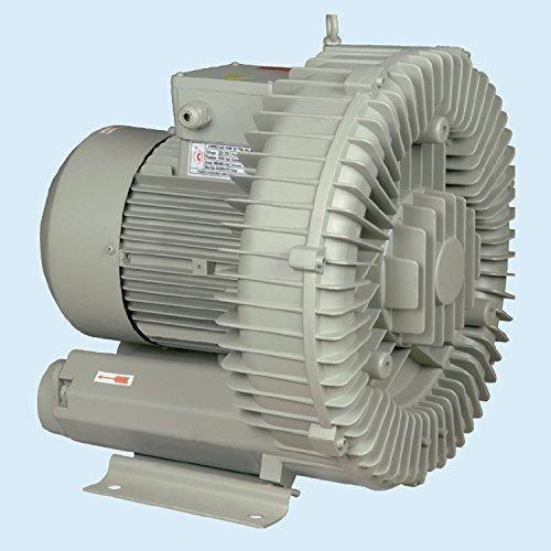 173872 3phase 3000w Elektromotor-Gebläse-Fisch-Teich Belüfter Sauerstoff Industriell