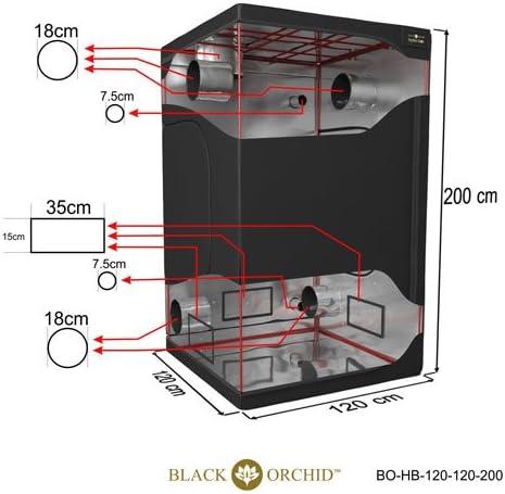 Black Orchid hydro-box Licht® - Tienda de campaña para ...