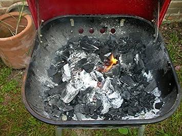 Amazon.com: Fatwood, ocote – Natural Fire Starter: Jardín y ...