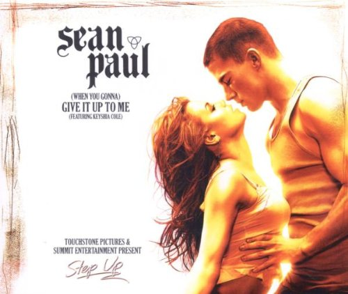 Sean Paul - Give It Up To Me - Zortam Music