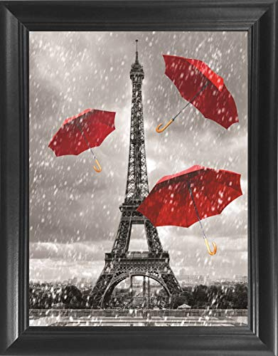 Eiffel Tower Black White & Red Art Framed 3D Lenticular Picture - Unbelievable Life Like 3D Art Pictures, Lenticular Posters, Cool Art Deco, Unique Wall Art Decor, With Dozens to Choose From!