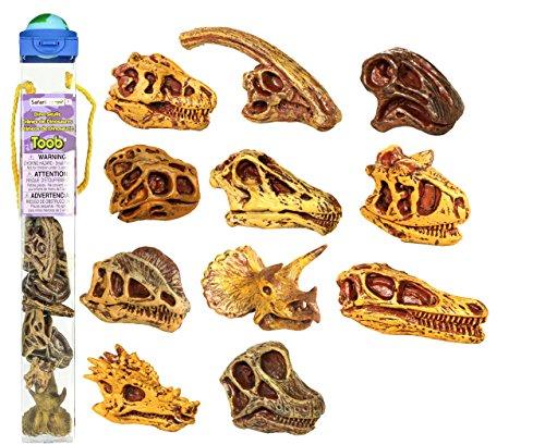 Dinosaur Toob - Safari Ltd Dinosaur Skulls TOOB, 11 pieces