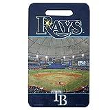 MLB Tampa Bay Rays  Stadium Seat Cushion - Kneel Pad