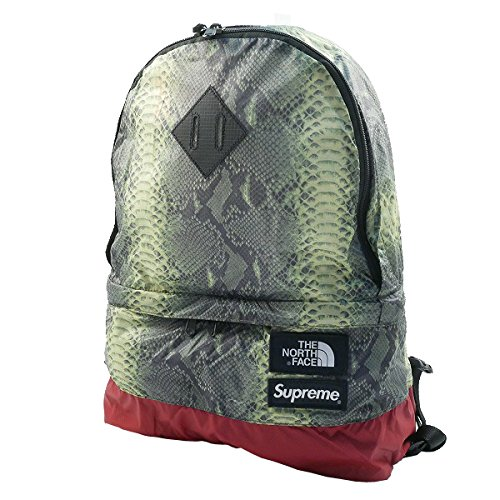 SUPREME シュプリーム ×THE NORTH FACE 18SS Snakeskin Lightweight Day Pack バックパック 緑 フリー 並行輸入品   B07DMTFV3X