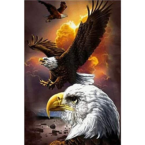 Xligo 5D DIY Round Diamond Painting Soaring Eagle Mosaics Cross-Stitch Diamond Embroidery New Year Decoration Gifts Diamant (Soaring Eagle Embroidery)
