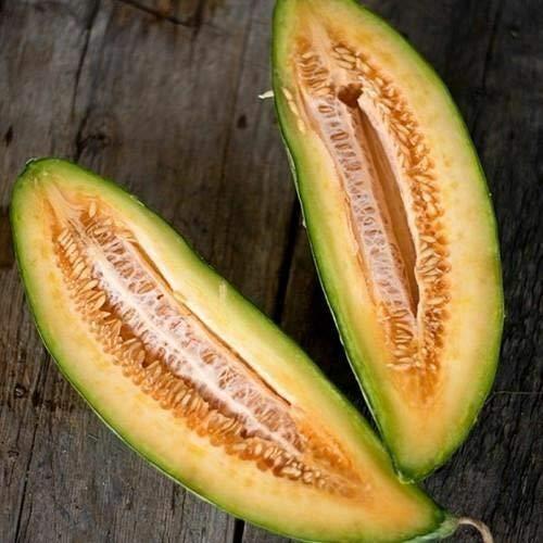 Banana Melon Seeds (Cucumis melo) 50+Seeds,- Limits (Banana Melon Seeds)